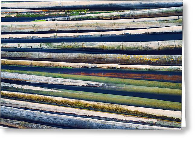 Geometric Lines Greeting Cards - Colorful Bamboo Greeting Card by Wim Lanclus