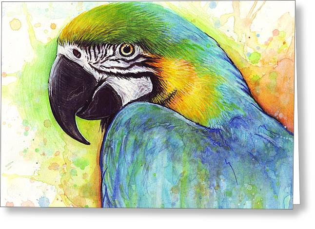 Colorful Animal Art Greeting Cards - Colorful Bird Macaw Parrot Painting Greeting Card by Olga Shvartsur