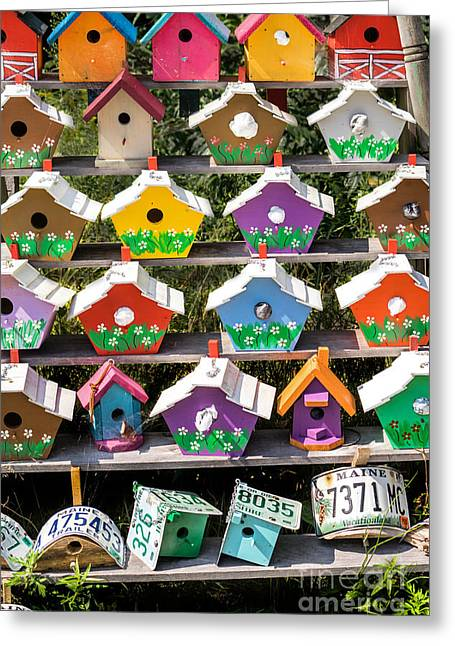 Hand Made Digital Art Greeting Cards - Colorful Birdhouses Greeting Card by Jerry Fornarotto
