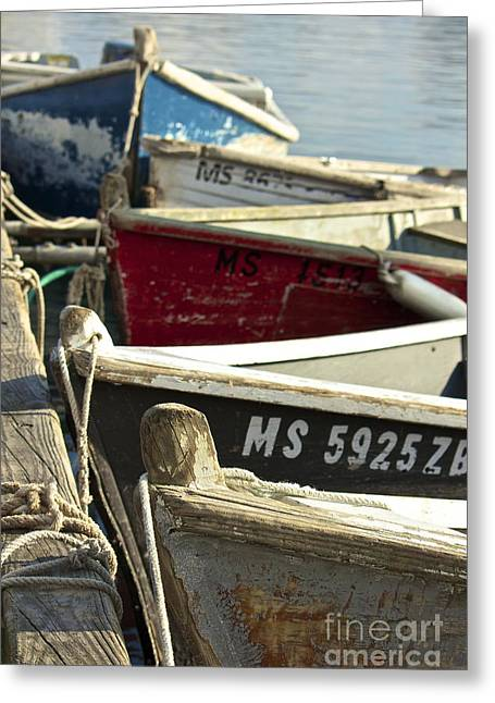 Amazing Jules Greeting Cards - Colorful Boats at Dock Greeting Card by Amazing Jules