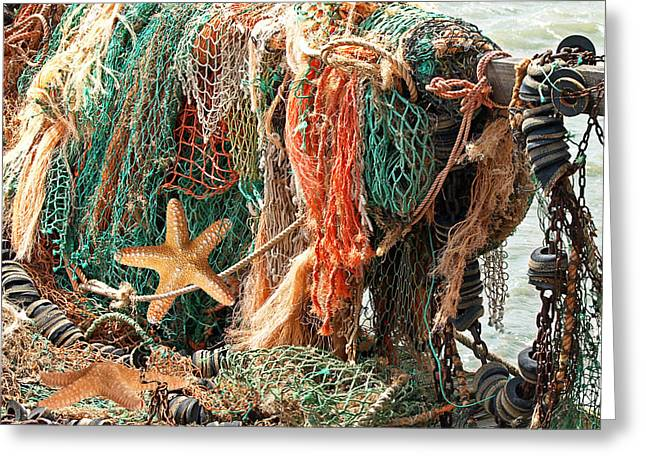Star Fish Greeting Cards - Colorful Catch - Starfish in Fishing Nets Square Greeting Card by Gill Billington