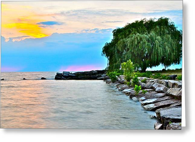 Willow Lake Greeting Cards - Colorful Coastline Greeting Card by Frozen in Time Fine Art Photography