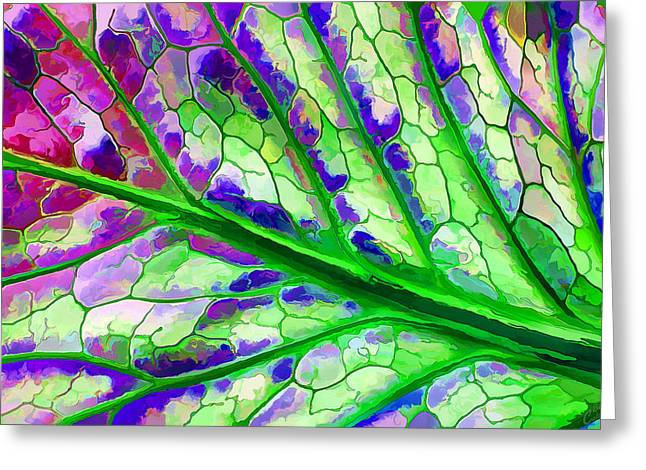 Abstract Shapes Greeting Cards - Colorful Coleus Leaf Abstract 4 Greeting Card by Bill Caldwell -        ABeautifulSky Photography