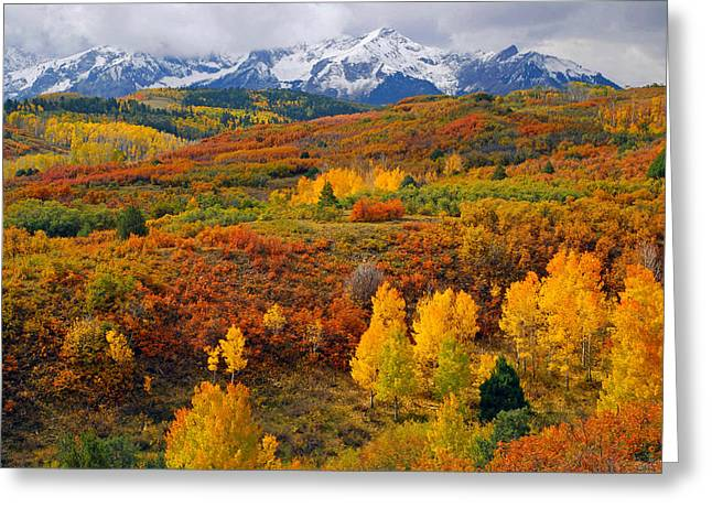 Snow Capped Greeting Cards - Colorful Colorado at its Best   Greeting Card by John Hoffman