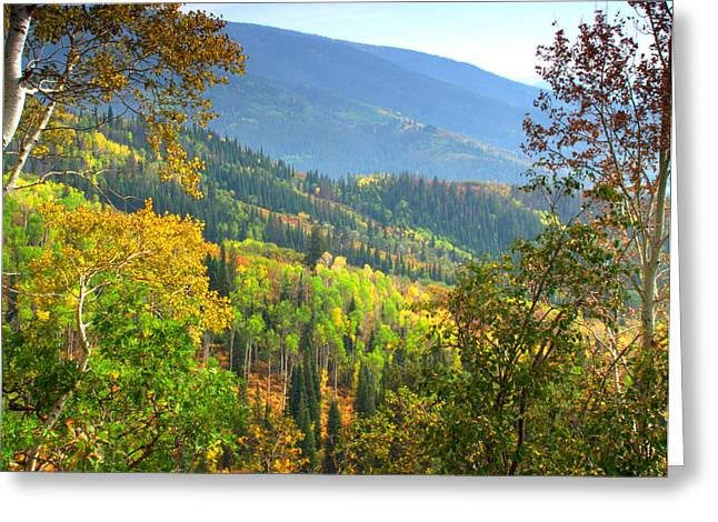 Color Change Greeting Cards - Colorful Colorado Greeting Card by Brian Harig
