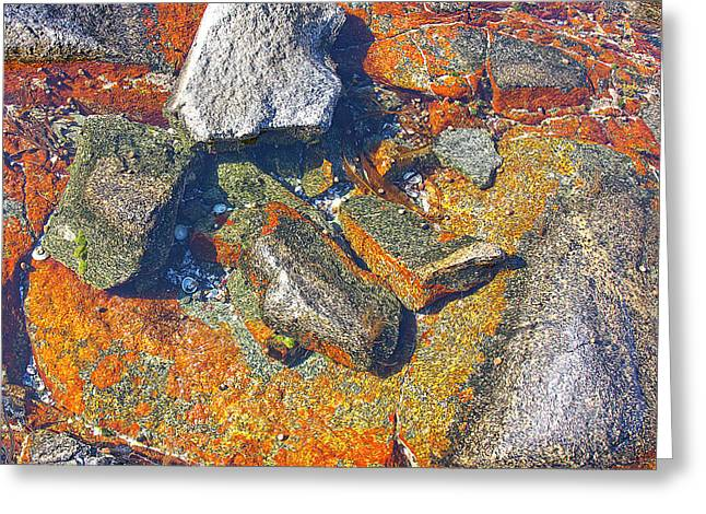 Cracked Stone Greeting Cards - Colorful Earth History Greeting Card by Heiko Koehrer-Wagner