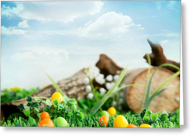 Mythja Greeting Cards - Colorful Easter eggs Greeting Card by Mythja  Photography