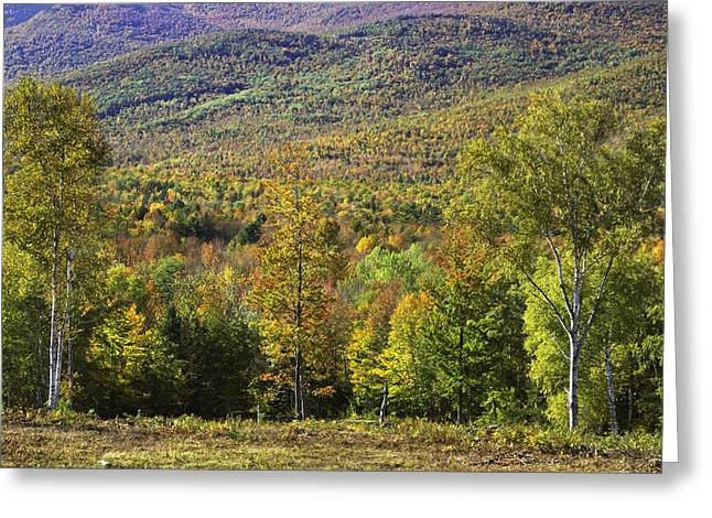 Maine Landscape Greeting Cards - Colorful Fall Landscape From Center Hill in Weld Maine Greeting Card by Keith Webber Jr