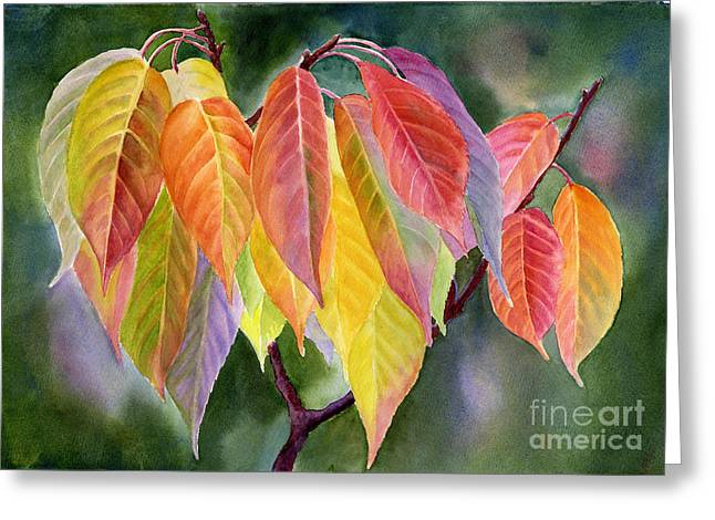 Colorful Fall Leaves With Background Greeting Card by Sharon Freeman
