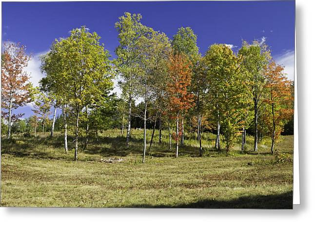 New England Wilderness Greeting Cards - Colorful Fall Trees on Center Hill Mount blue State Park in Main Greeting Card by Keith Webber Jr