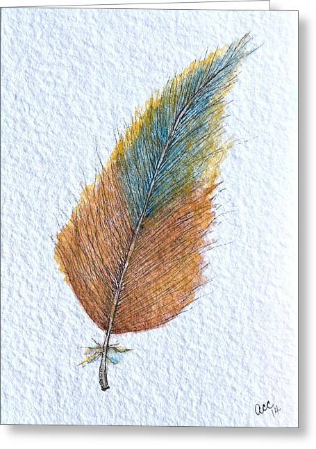 Nature Greeting Cards - Colorful Feather Greeting Card by Anne Clark