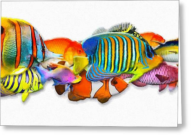 Plunging Greeting Cards - Colorful Fish Greeting Card by Victor Gladkiy