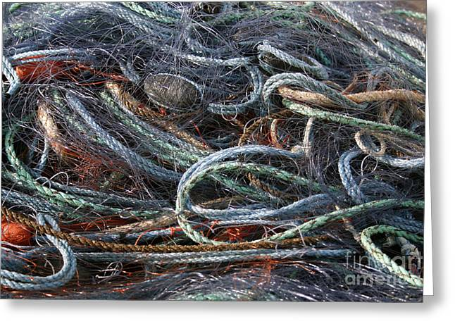 Gill Netter Greeting Cards - Colorful Fishing Nets Greeting Card by Patricia Hofmeester