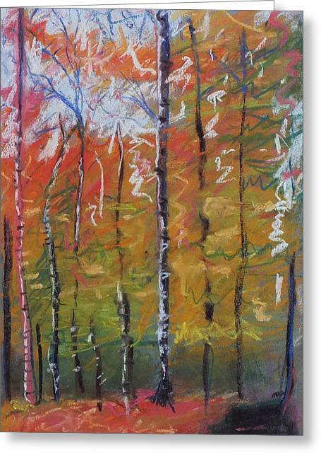 Birch Tree Pastels Greeting Cards - Colorful Forest Greeting Card by Laura Sullivan