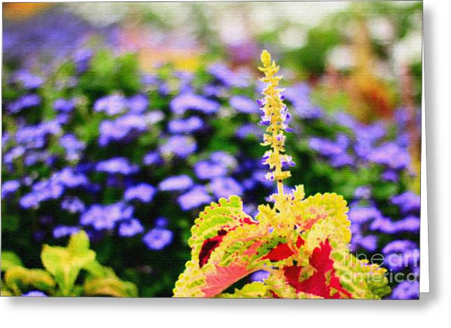 Colorful Garden Scene Greeting Card by Beverly Claire Kaiya