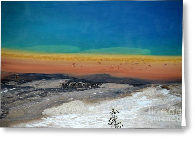 Hot Springs Yellowstone Midway Hot Springs Yellowstone Hot Greeting Cards - Colorful Grand Prismatic Spring Greeting Card by Debra Thompson