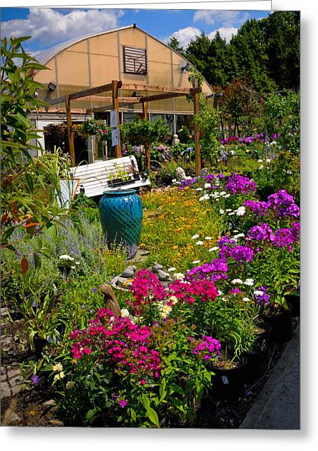 Garden Center Greeting Cards - Colorful Greenhouse Greeting Card by Amy Cicconi