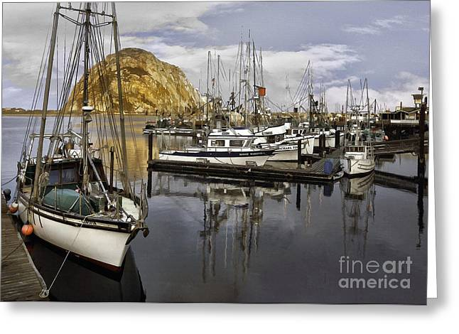 Morro Bay Harbor Greeting Cards - Colorful Harbor II Greeting Card by Sharon Foster