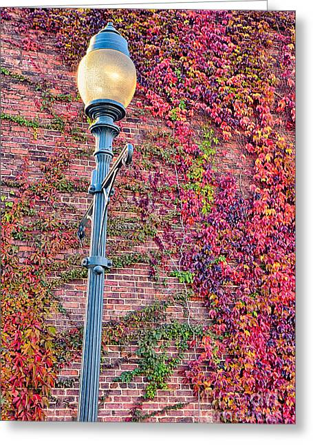 Triad Greeting Cards - Colorful Ivy and Lamppost I Greeting Card by Dan Carmichael