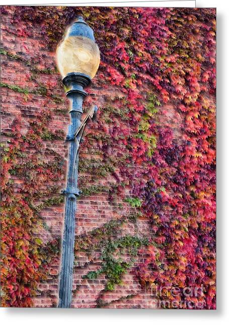 Photographers Greensboro Greeting Cards - Colorful Ivy and Lamppost II Greeting Card by Dan Carmichael