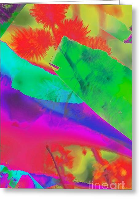 Kathleen Struckle Greeting Cards - Colorful Greeting Card by Kathleen Struckle