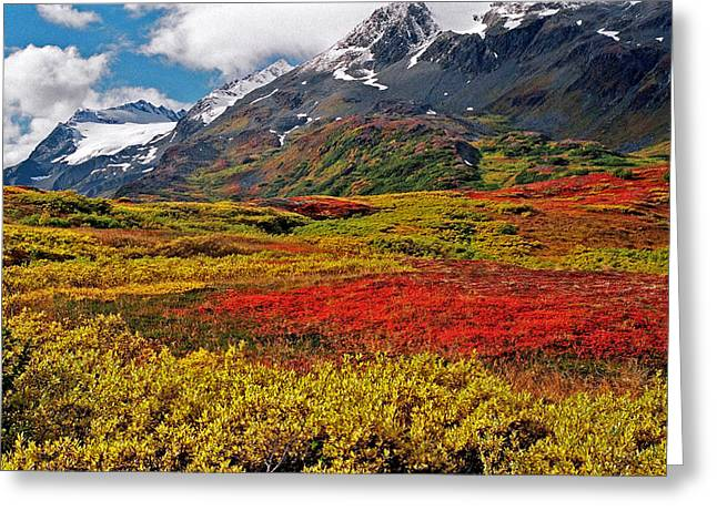 Colorful Land - Alaska Greeting Card by Juergen Weiss