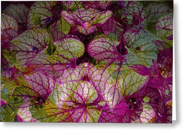 Garden Art Pyrography Greeting Cards - Colorful Leaf Greeting Card by Eiwy Ahlund