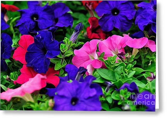 Colorful Morning Glory Greeting Card by Kaye Menner