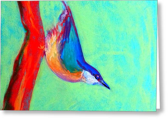 Whimsical. Greeting Cards - Colorful Nuthatch Bird Greeting Card by Sue Jacobi