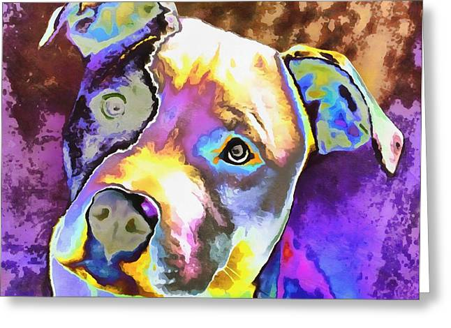 Cute Mixed Media Greeting Cards - Colorful Pit Bull  Greeting Card by Dan Sproul