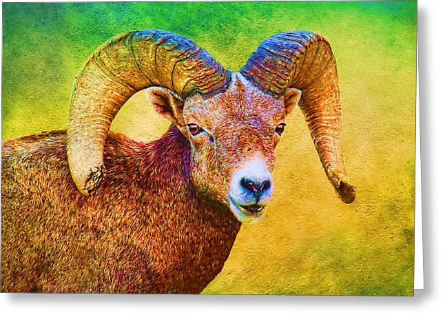 Sheep On Rocks Greeting Cards - Colorful Ram Greeting Card by Steve McKinzie