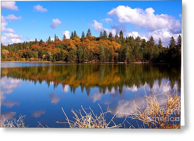 Purchase Greeting Cards - Colorful Reflection Greeting Card by Patrick Witz