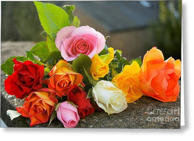 Textile Photographs Greeting Cards - Colorful Roses Greeting Card by Babs Gorniak