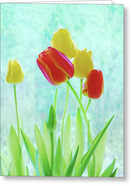 Colorful Spring Tulip Flowers Greeting Card by Jennie Marie Schell