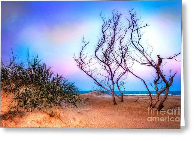 Sea Oats Greeting Cards - Colorful Sunrise Hatteras Outer Banks I Greeting Card by Dan Carmichael