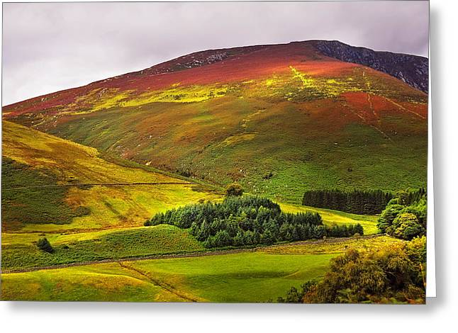Healing Journey Greeting Cards - Colorful Wicklow Hills at Fall. Ireland Greeting Card by Jenny Rainbow