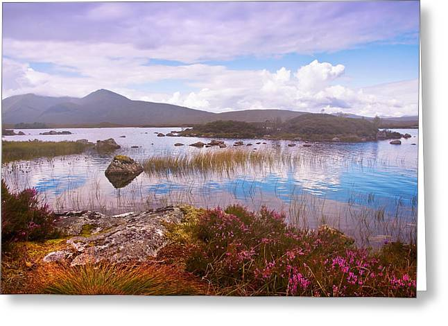Colorful World Of Rannoch Moor. Scotland Greeting Card by Jenny Rainbow