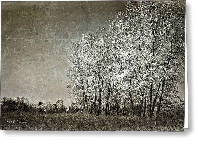 Chalco Hills Recreation Area Greeting Cards - Colorless Fall Greeting Card by Jeff Swanson