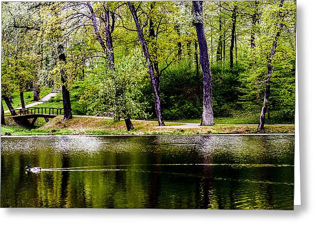 Pond In Park Greeting Cards - Colorpark Greeting Card by Yevgeni Kacnelson