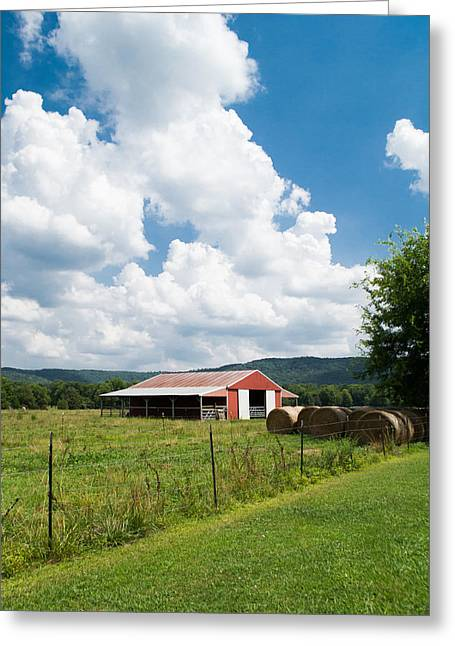Summer On The Farm Greeting Cards - Colors and Shapes Greeting Card by Shelby  Young