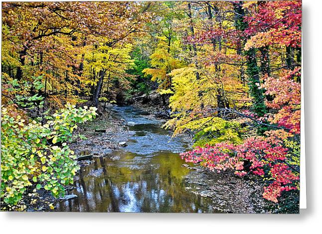 Colossal Greeting Cards - Colors Galore Greeting Card by Frozen in Time Fine Art Photography