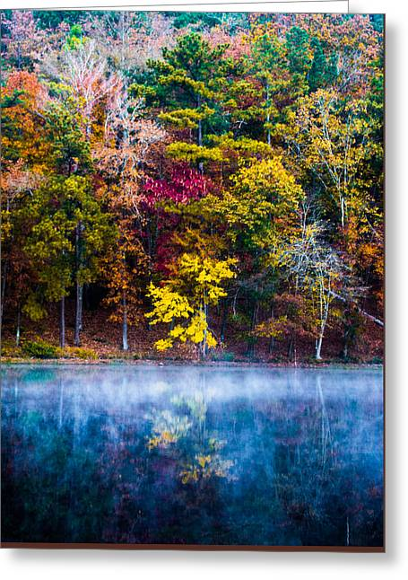 Fall Trees Greeting Cards - Colors In Early Morning Fog Greeting Card by Parker Cunningham