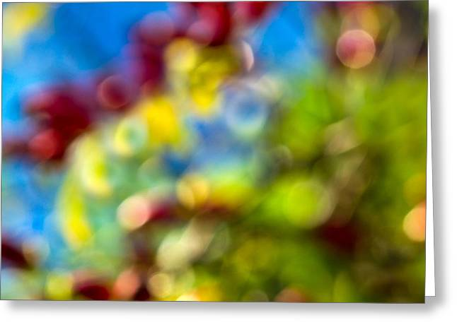 Multicolored Roses Greeting Cards - Colors Of Autumn - Featured 3 Greeting Card by Alexander Senin