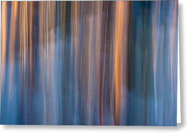 Blur Greeting Cards - Colors of dusk Greeting Card by Davorin Mance