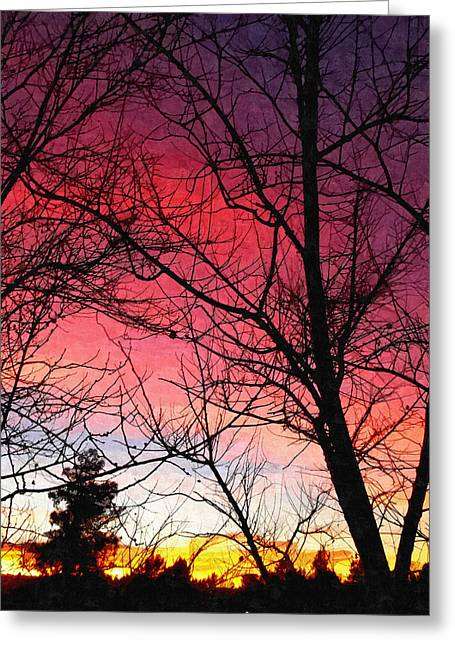 Bare Trees Greeting Cards - Colors Of Dusk Greeting Card by Glenn McCarthy Art and Photography