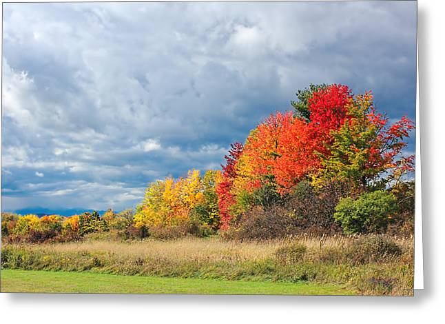 Charlotte Vermont Greeting Cards - Colors of Fall Greeting Card by William Alexander