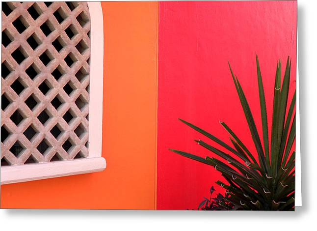 Caribbean Port Greeting Cards - Colors of Mahahual Greeting Card by Julie Palencia