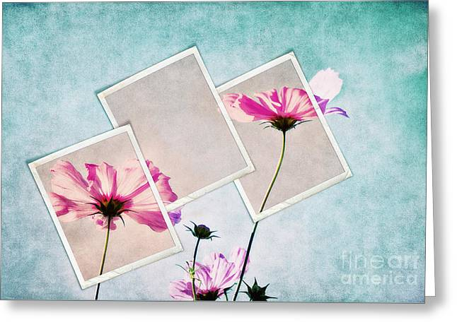 Colors Of Nature Greeting Card by Angela Doelling AD DESIGN Photo and PhotoArt