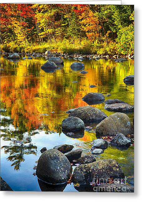 Foliage In White Mountains Greeting Cards - Colors of New England Autumn I Greeting Card by George Oze