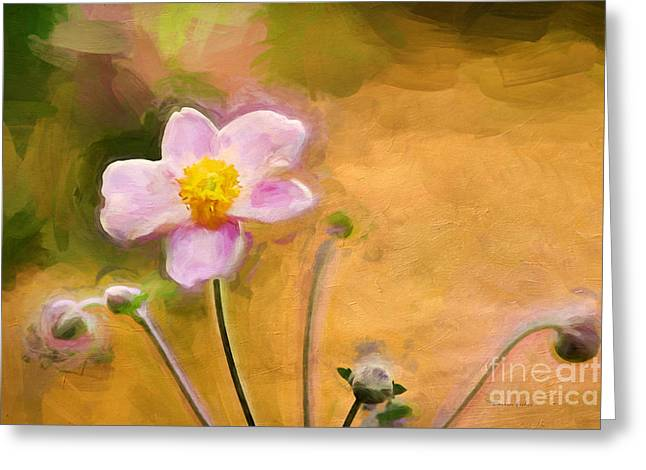 Thimbleweed Greeting Cards - Colors of October Greeting Card by Darren Fisher